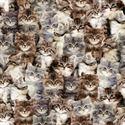 Bild på Multi Kittens Digitally Printed